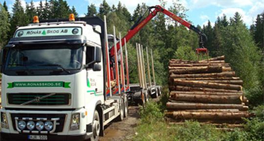 Hjälp med din skogsbruksplan